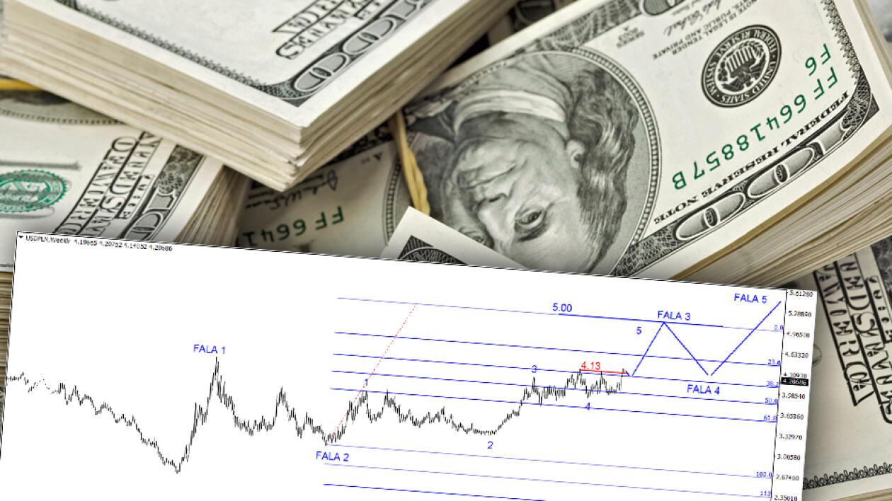 Dolar I Euro Po 5 Zł Oto Czarny Scenariusz Na 2017 Rok