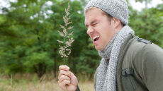 Alergicy jako wyższe stadium ewolucji