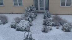 Poniedziałkowe opady śniegu w okolicach Londynu (tvnmeteo.pl)