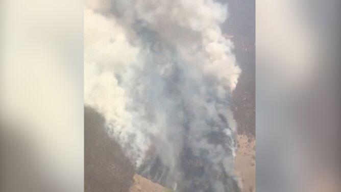 Po ulewach ryzyko pożarów znów może wzrosnąć. W Australii prognozowane są upały