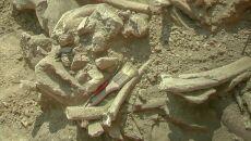 Pod Kopcem Kościuszki znajdowało się cmentarzysko mamutów